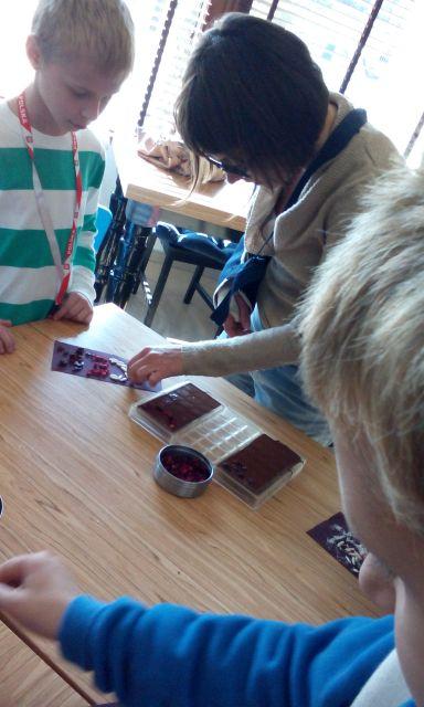 czekolada019.jpg